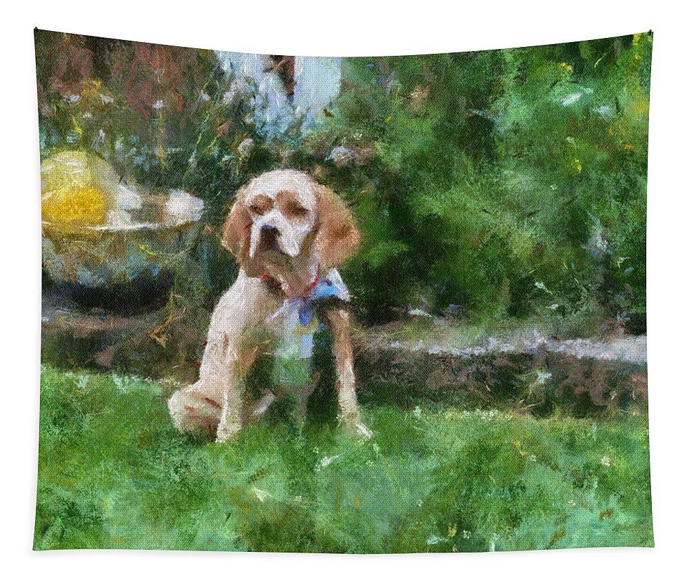 Spaniel Tapestry featuring the photograph Cocker Spaniel Outside 05 by Thomas Woolworth