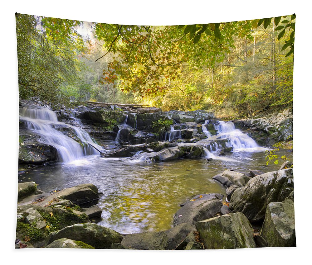 Appalachia Tapestry featuring the photograph Coker Creek Falls by Debra and Dave Vanderlaan