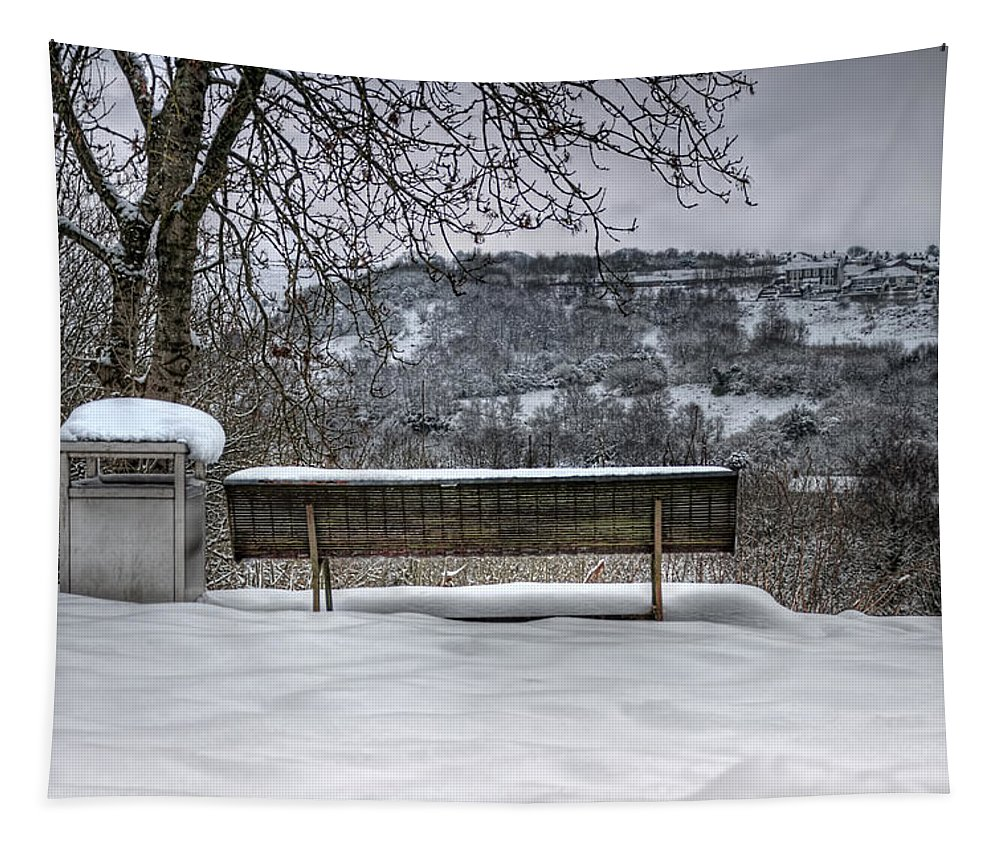 Snowy Seat Tapestry featuring the photograph Cold Seat With A View 2 by Steve Purnell