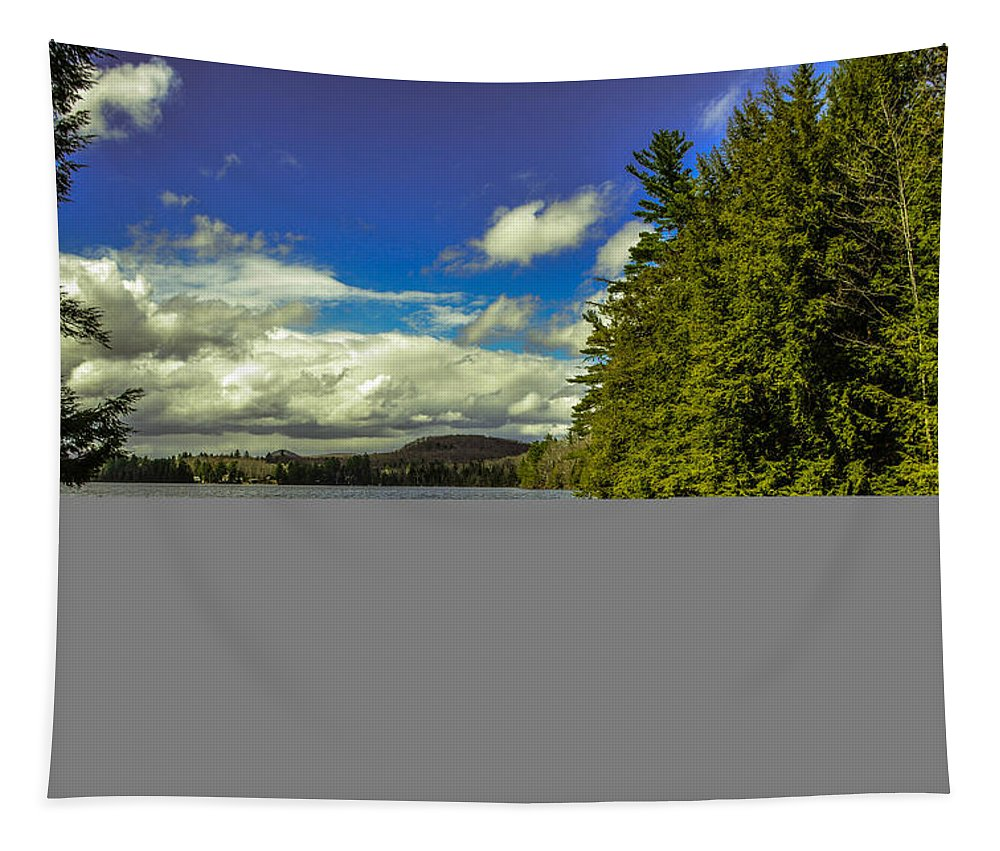 Vermont Tapestry featuring the photograph Cold Spring Day In Vermont by Sherman Perry