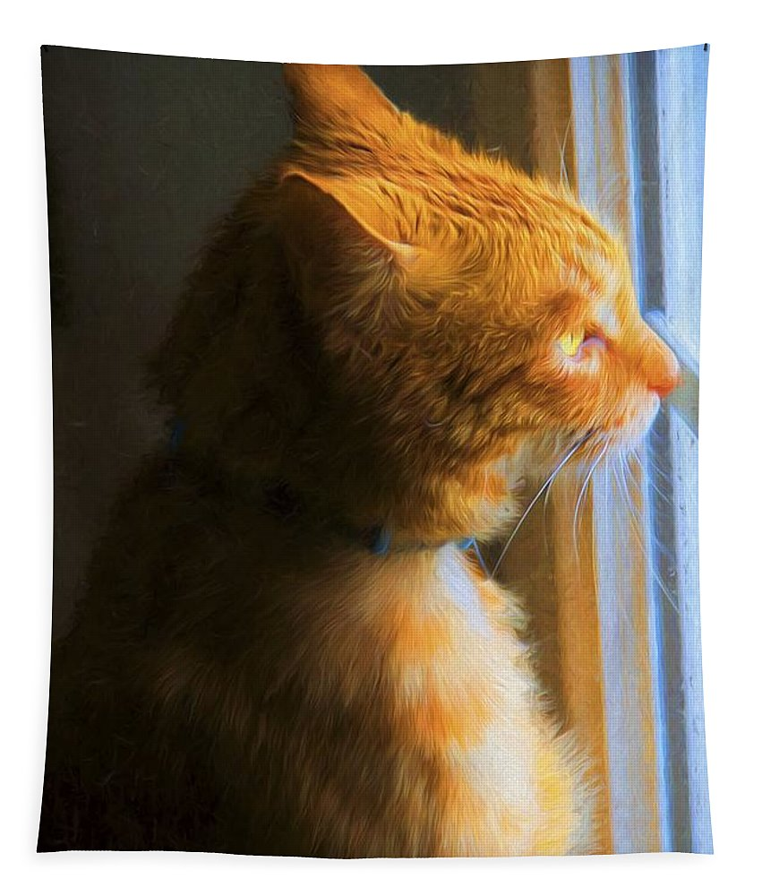 Cat Tapestry featuring the photograph Colekitty On The Lookout by Alice Gipson