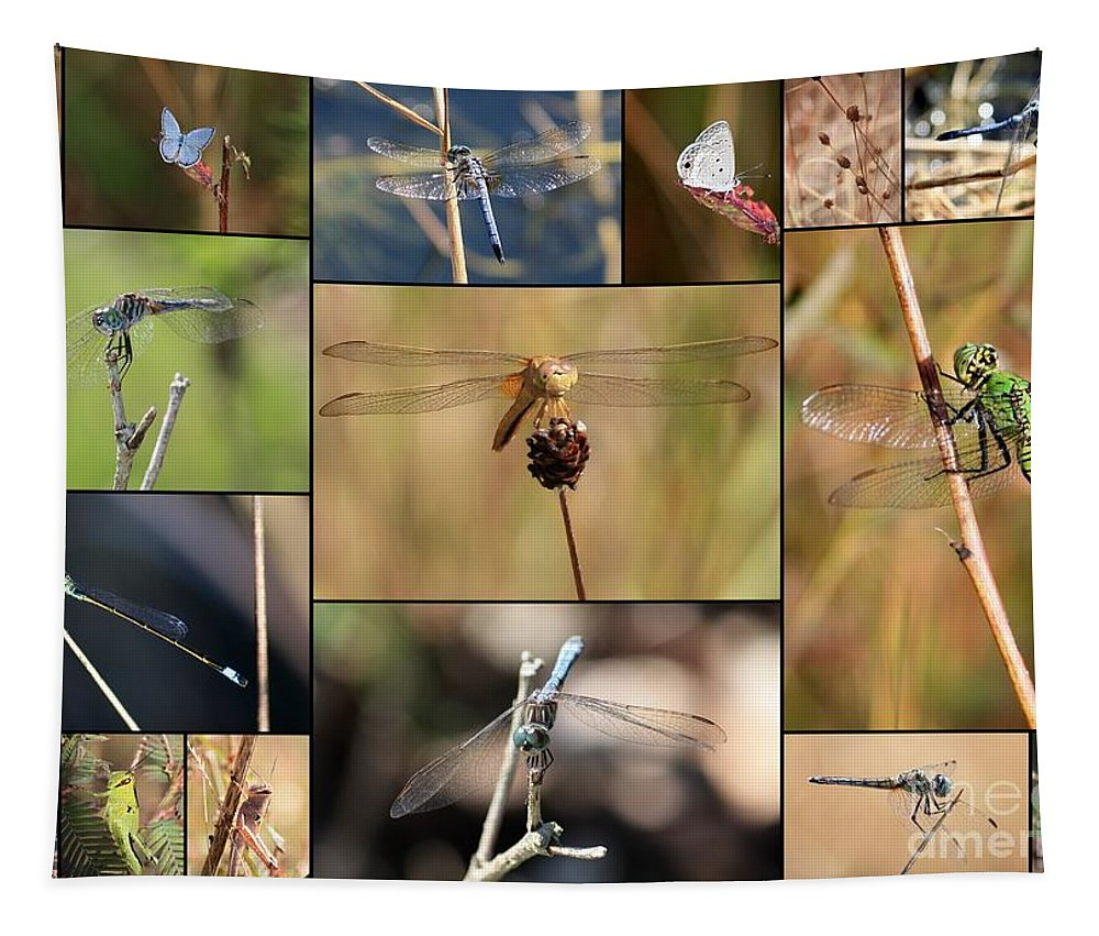 Dragonfly Tapestry featuring the photograph Collage Marsh Life by Carol Groenen