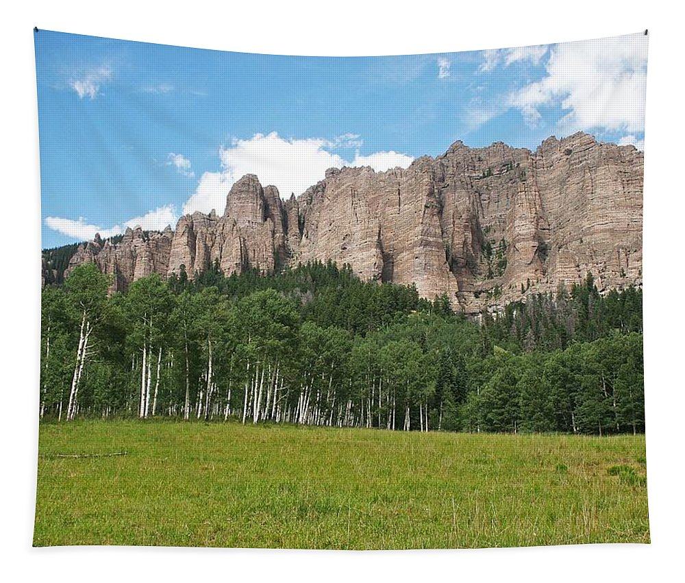 Colorado Side Of The Four Corners Area Tapestry featuring the photograph Colorado Side Of The Four Corners Area by Tom Janca