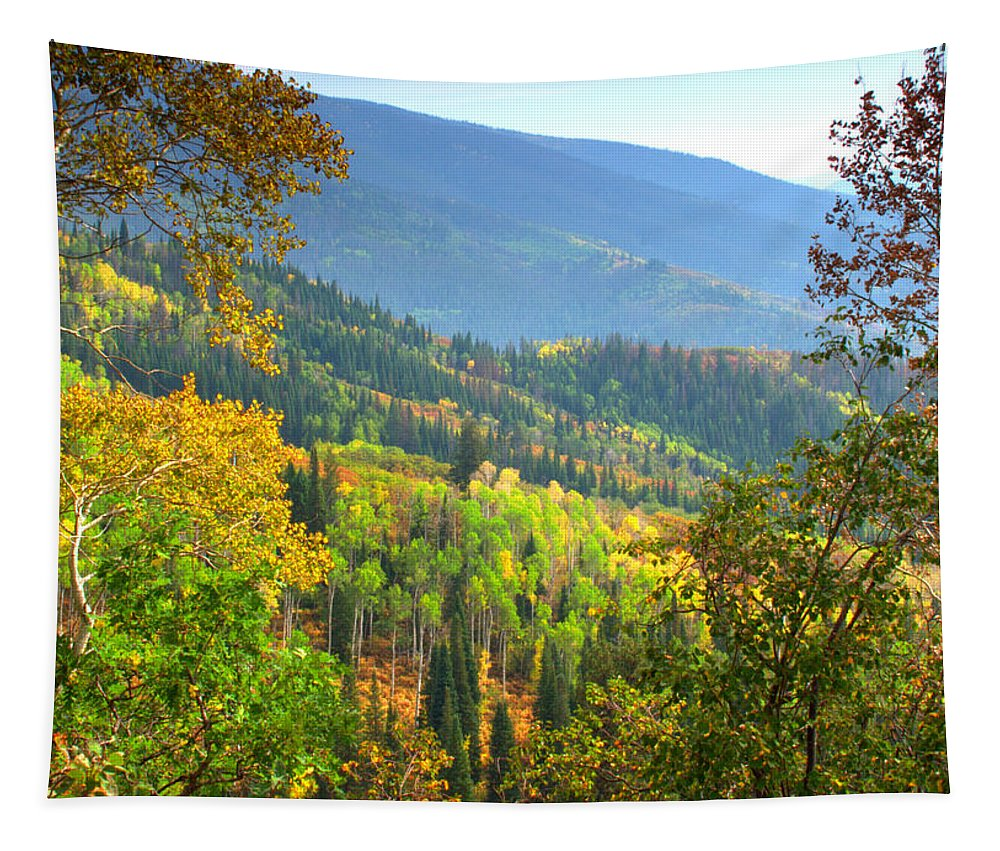 Colorful Colorado Turning Aspens Mountain Landscape Scene Tapestry featuring the photograph Colorful Colorado by Brian Harig