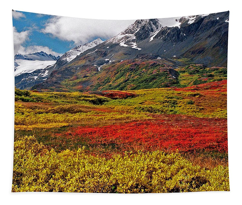 Alaska Tapestry featuring the photograph Colorful Land - Alaska by Juergen Weiss