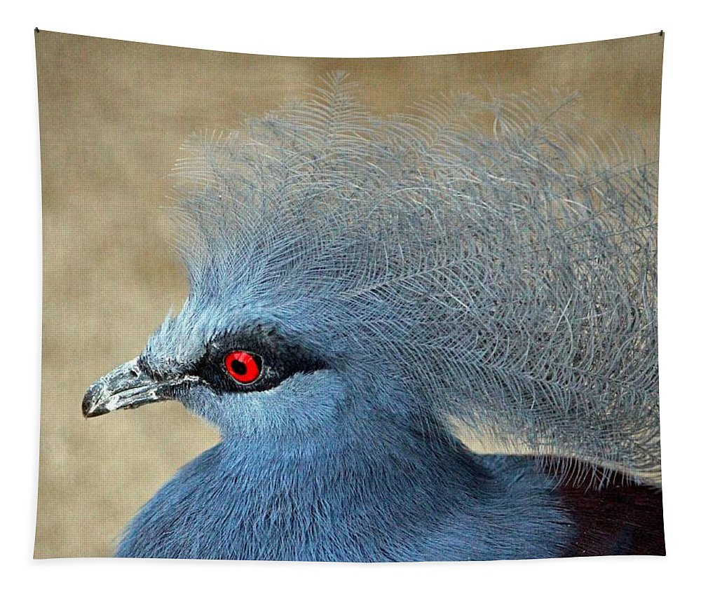 Bird Tapestry featuring the photograph Common Crowned Pigeon by Cynthia Guinn
