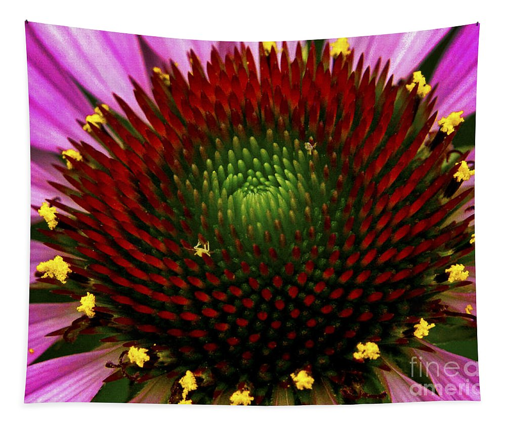 Flower Tapestry featuring the photograph Coneflower - Little Yellow Spider by Paul W Faust - Impressions of Light
