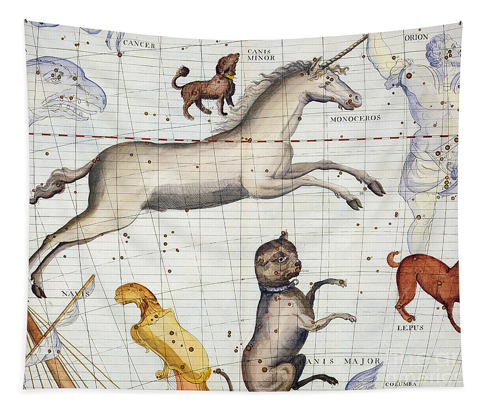 Map Tapestry featuring the painting Constellation of Monoceros with Canis Major and Minor by Sir James Thornhill