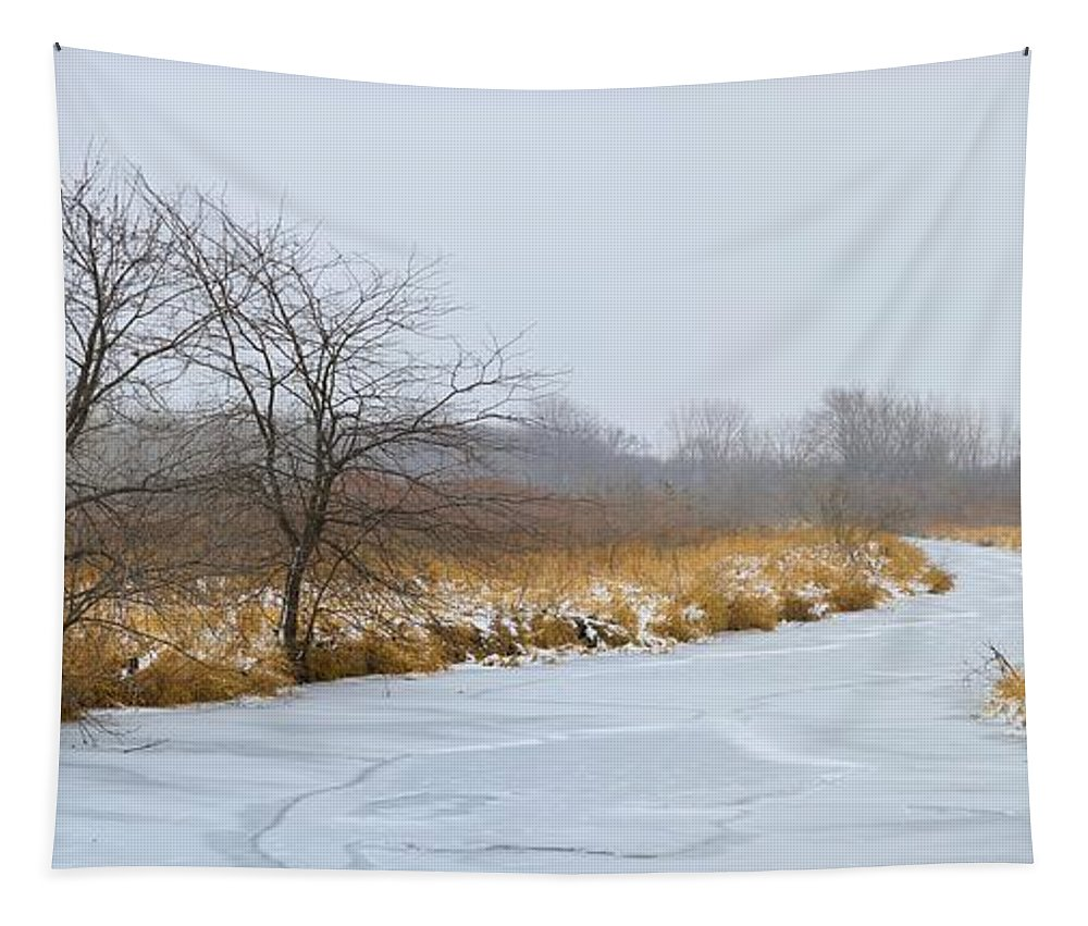 River Tapestry featuring the photograph Cool Dreams Winter by Bonfire Photography