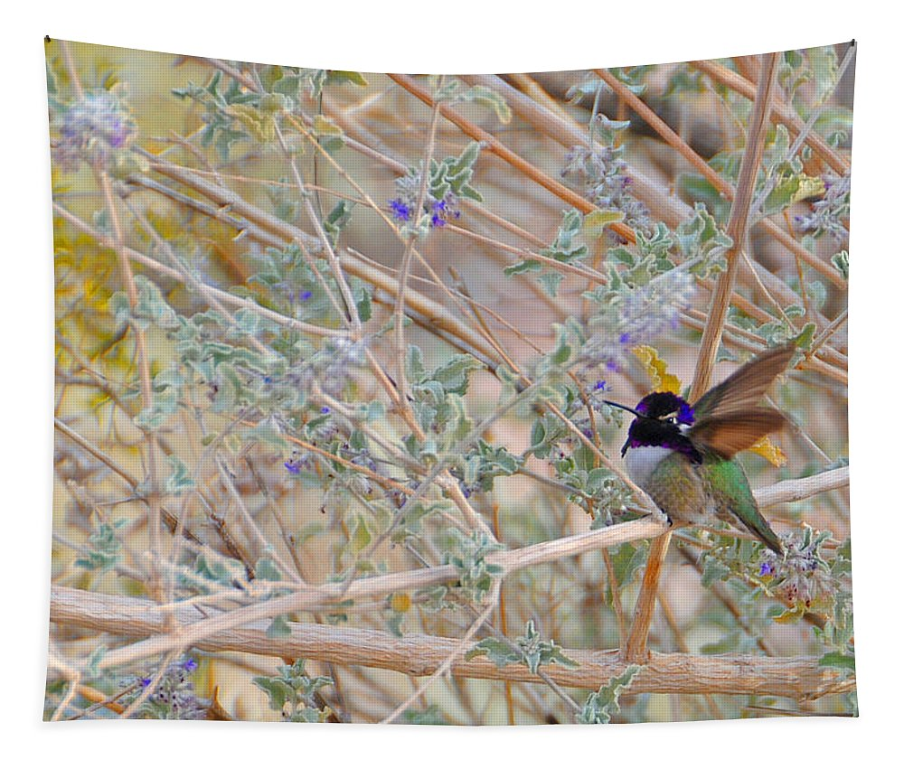 Hummers Tapestry featuring the photograph Costas Country by Lynn Bauer