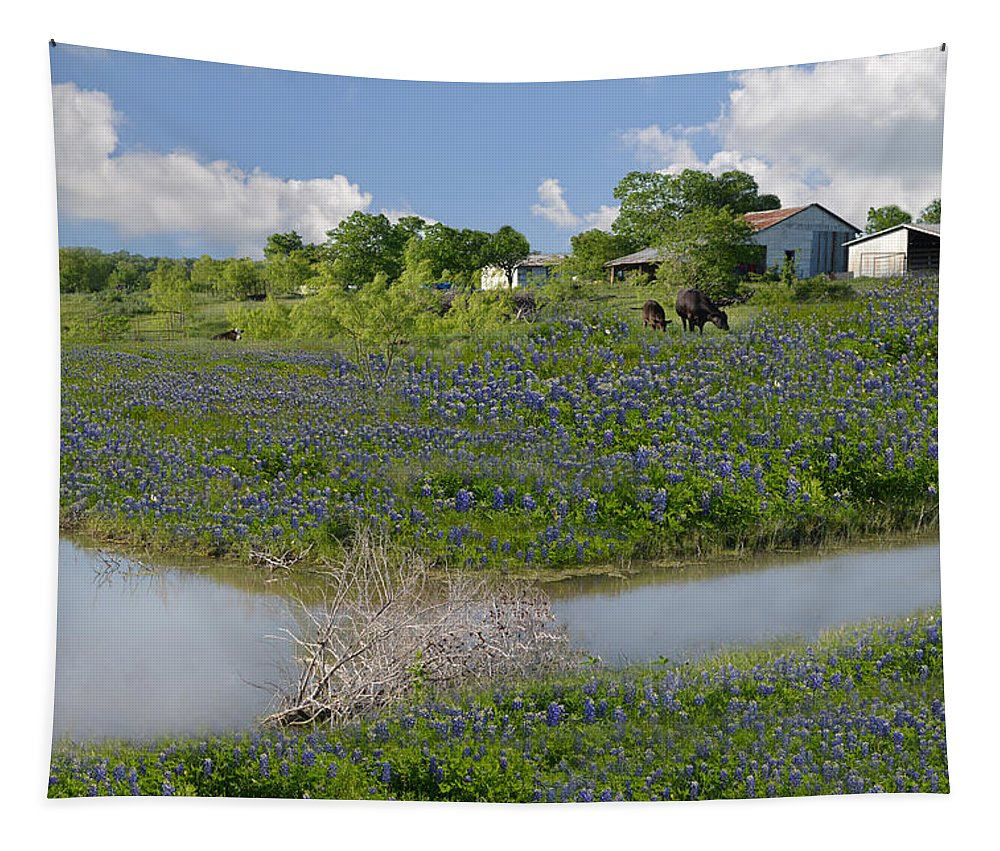 Bluebonnet Tapestry featuring the photograph Country Blues by Lynn Bauer