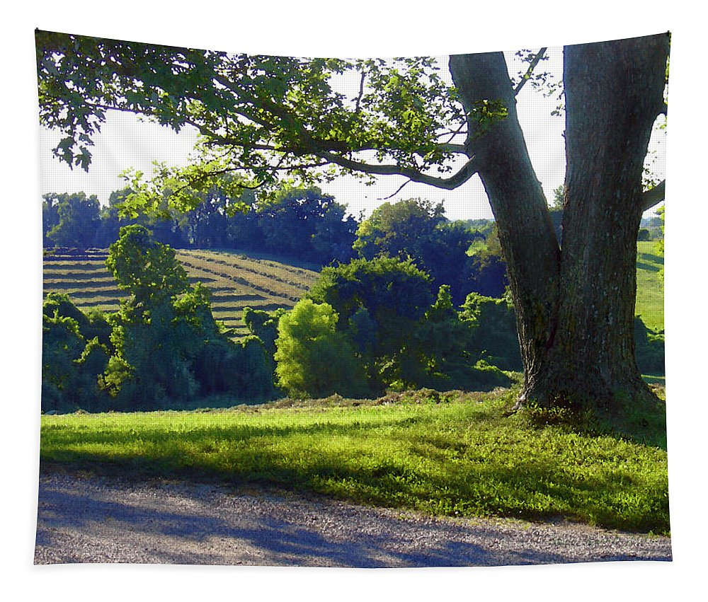 Landscape Tapestry featuring the photograph Country Landscape by Steve Karol