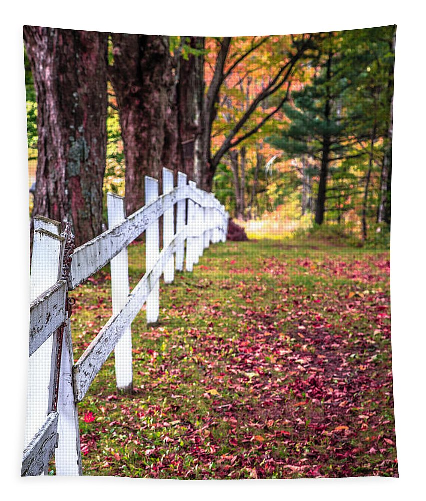Peachem Tapestry featuring the photograph Country Lane Fall Foliage Vermont by Edward Fielding