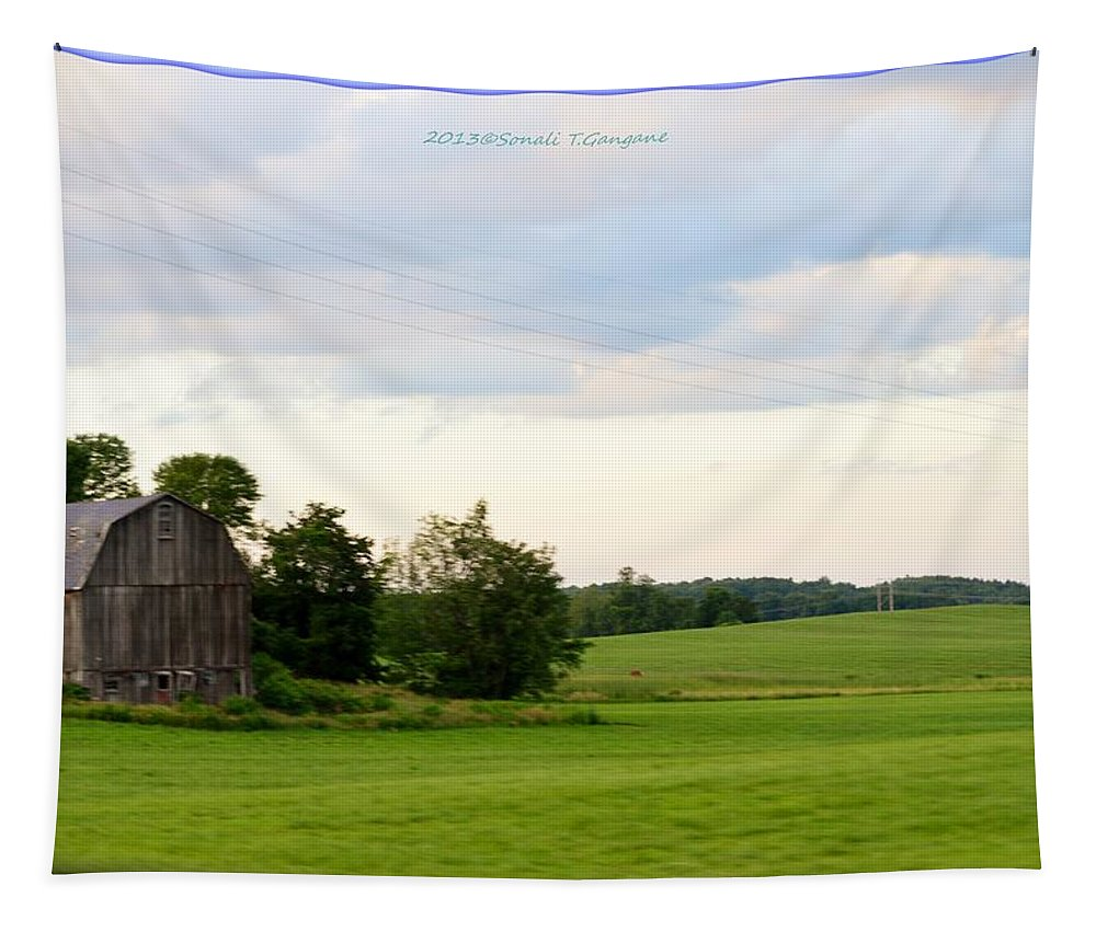Countryside Charm Tapestry featuring the photograph Countryside Charm by Sonali Gangane