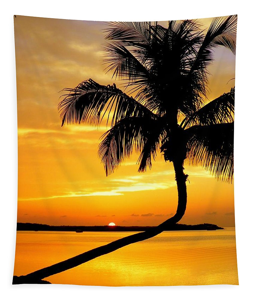 Palm Silhouettes Tapestry featuring the photograph Crooked Palm by Karen Wiles