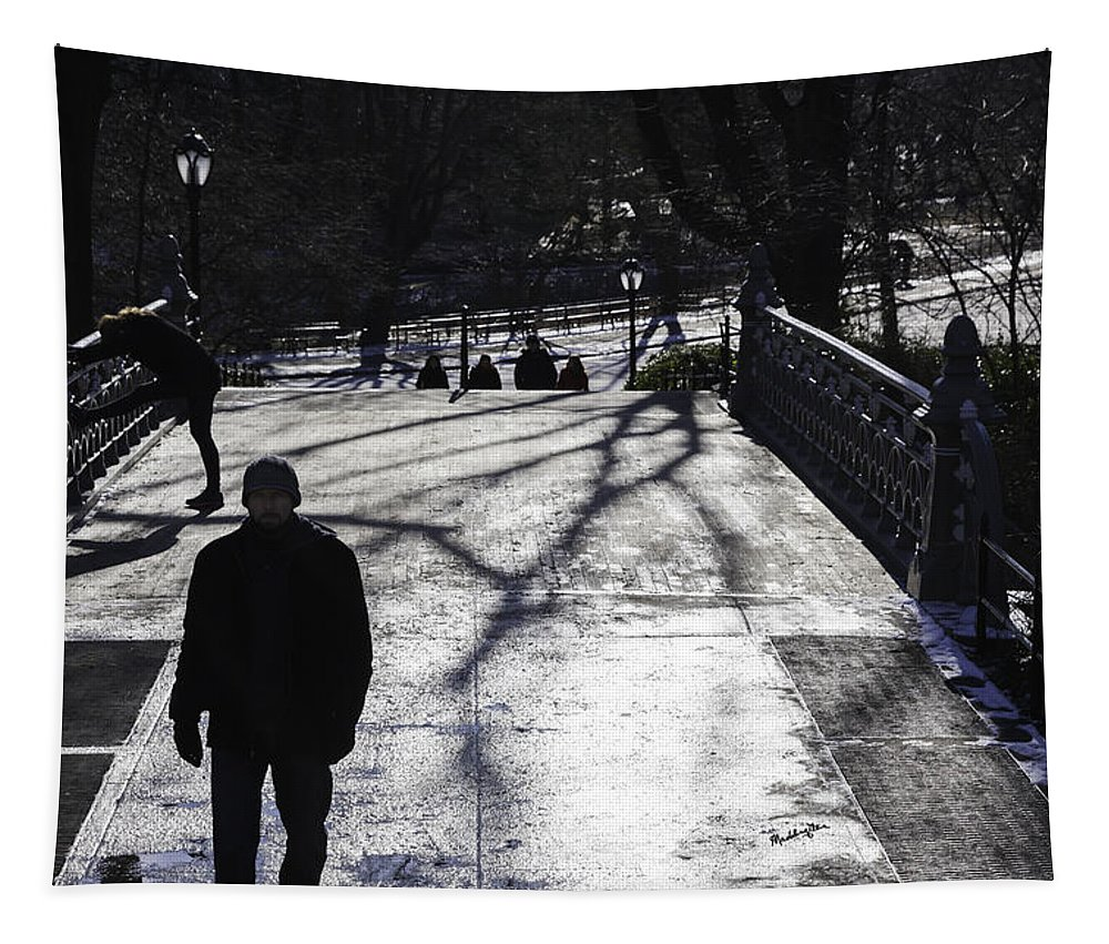 Park Tapestry featuring the photograph Crossing Over - Central Park - Nyc by Madeline Ellis
