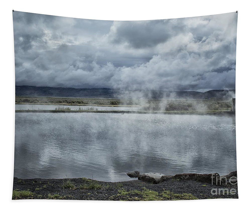 Hot Springs Tapestry featuring the photograph Crystal Crane Hot Springs by Belinda Greb