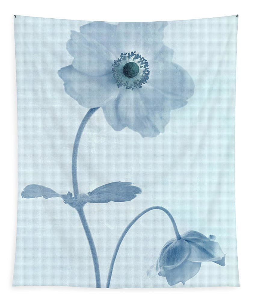 Japanese Windflowers Tapestry featuring the photograph Cyanotype Windflowers by John Edwards
