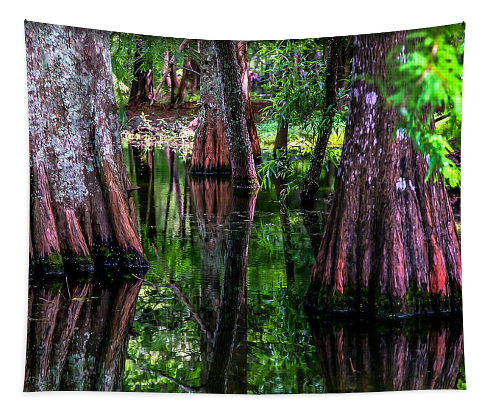 Cypress Tapestry featuring the photograph Cypress Secrets by Karen Wiles