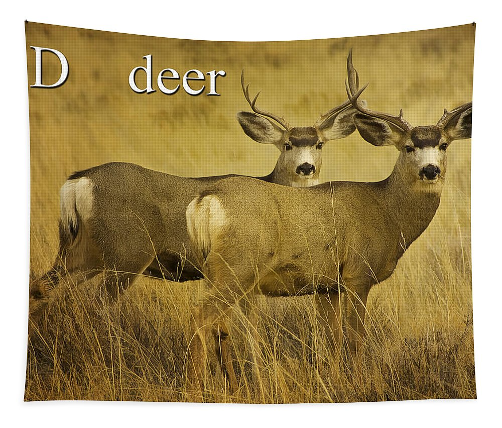 D Is For Deer Tapestry featuring the photograph D Is For Deer by Priscilla Burgers