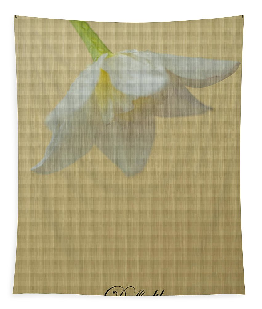 Daffodil Tapestry featuring the photograph Daffodil On Yellow by Steve Purnell