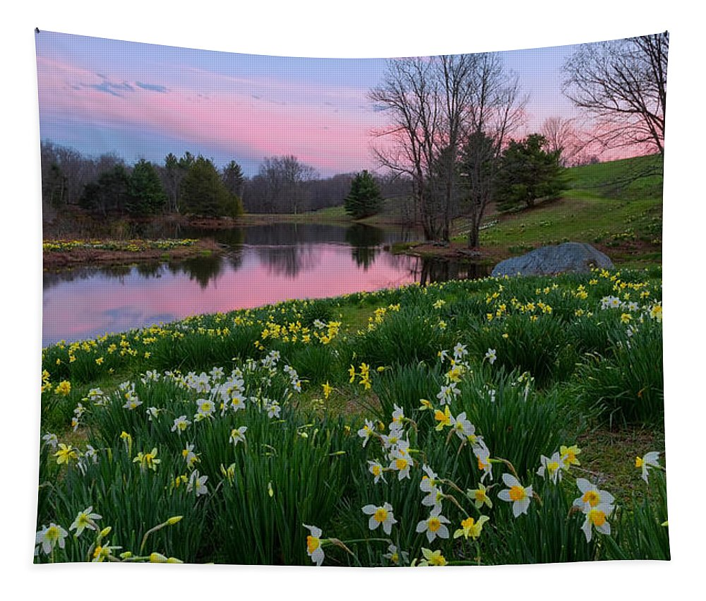 Daffodil Tapestry featuring the photograph Daffodil Sunset by Bill Wakeley