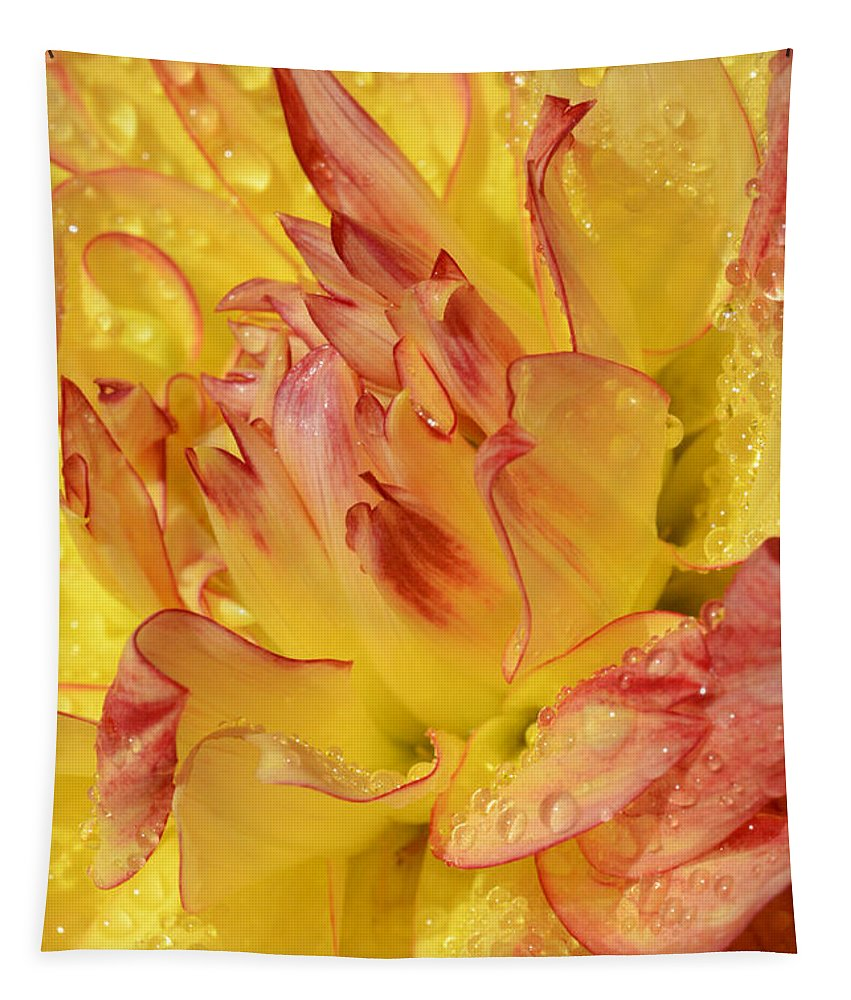 Dahlia Tapestry featuring the photograph Dahlia - 812 by Paul W Faust - Impressions of Light