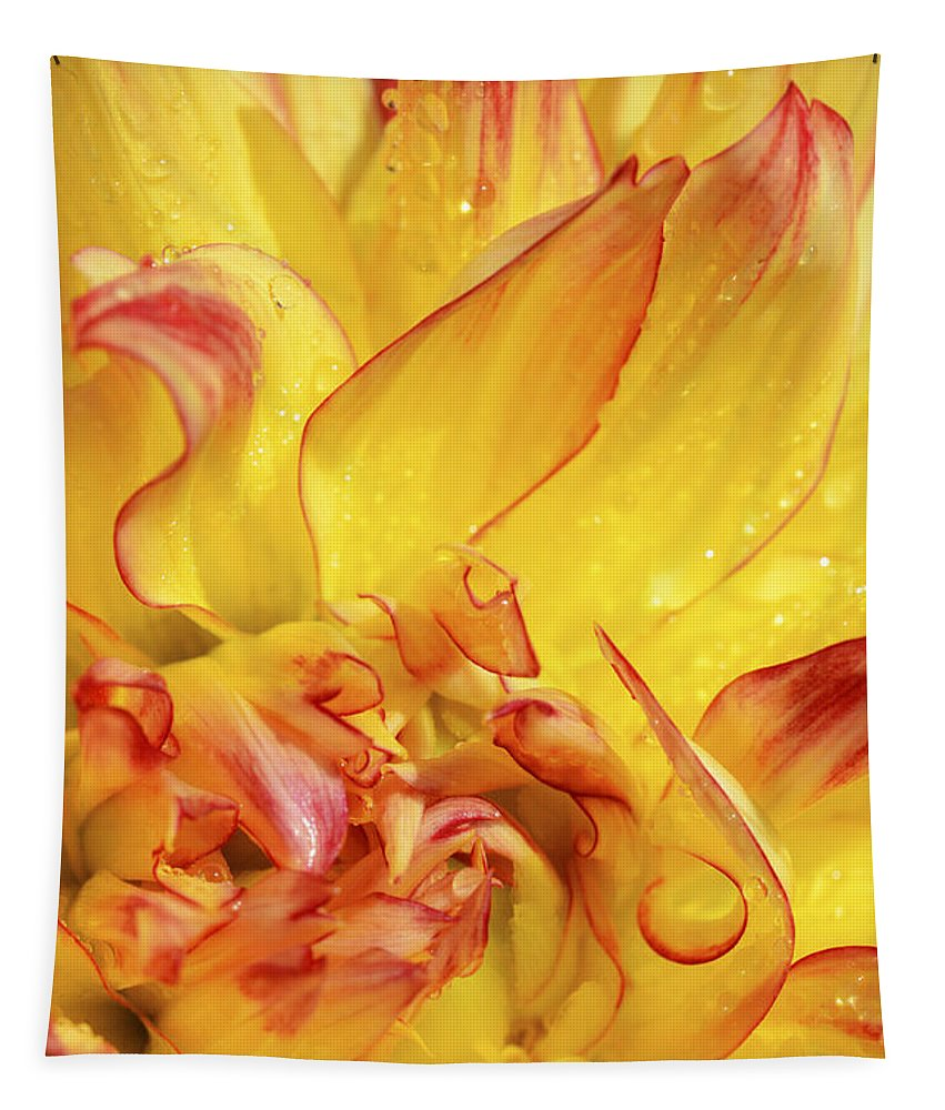 Dahlia Tapestry featuring the photograph Dahlia In The Rain - 815 by Paul W Faust - Impressions of Light