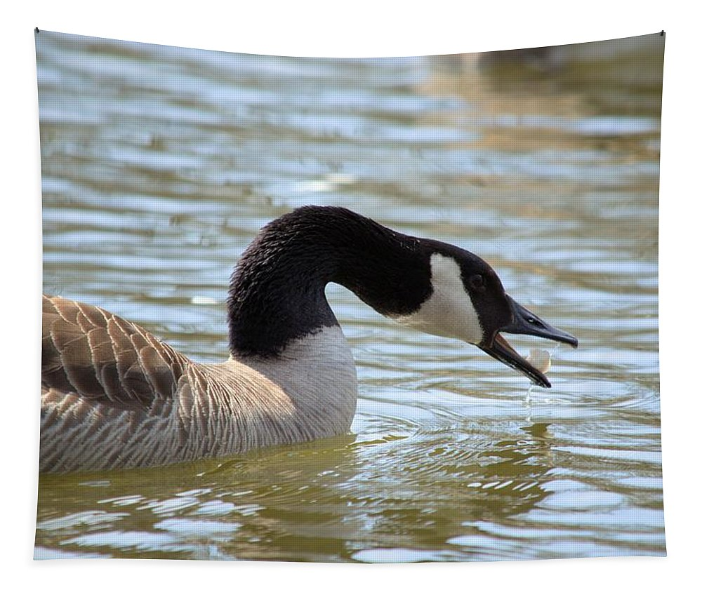 Goose Tapestry featuring the photograph Daily Bread by Bonfire Photography