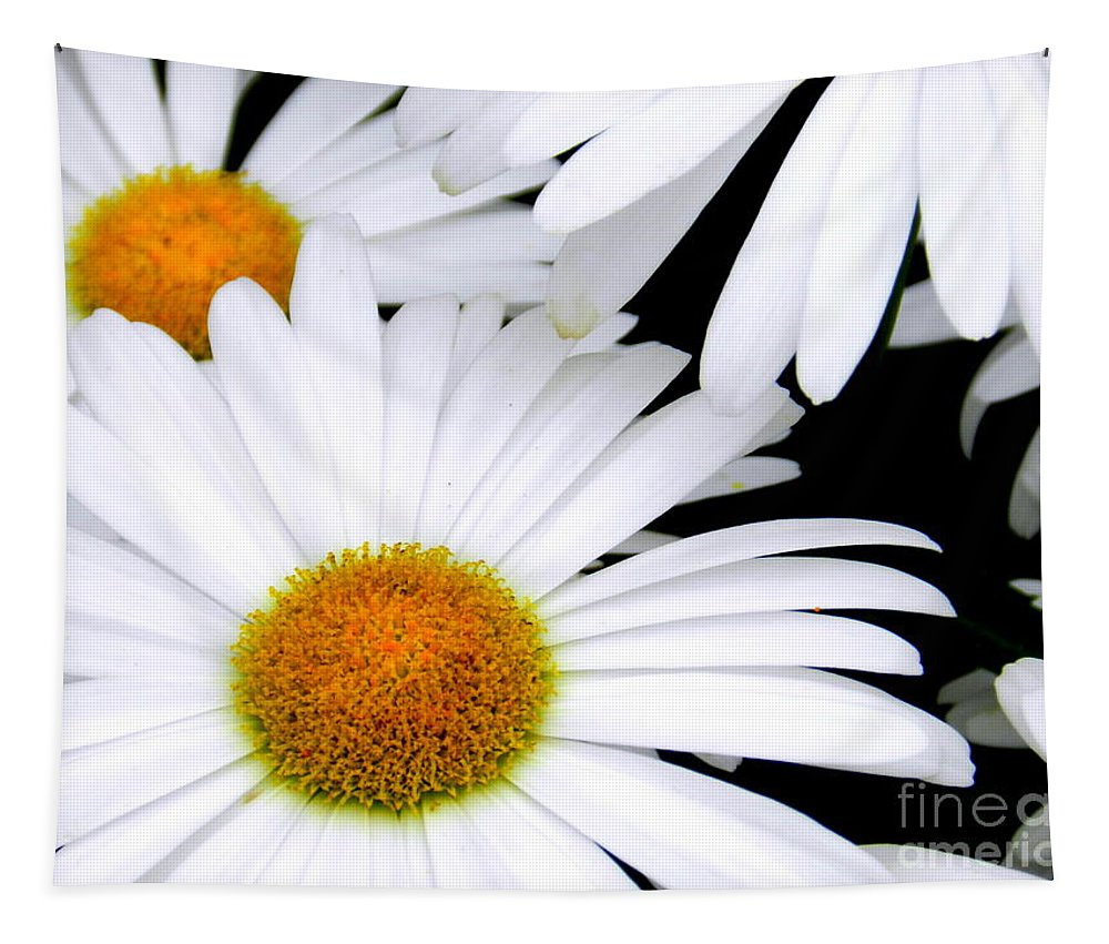 Art Tapestry featuring the photograph Daisies by Linda Galok