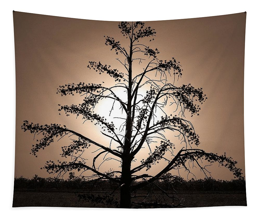 Moonlight Tapestry featuring the photograph Dancing On A Moonlight by Ben Yassa