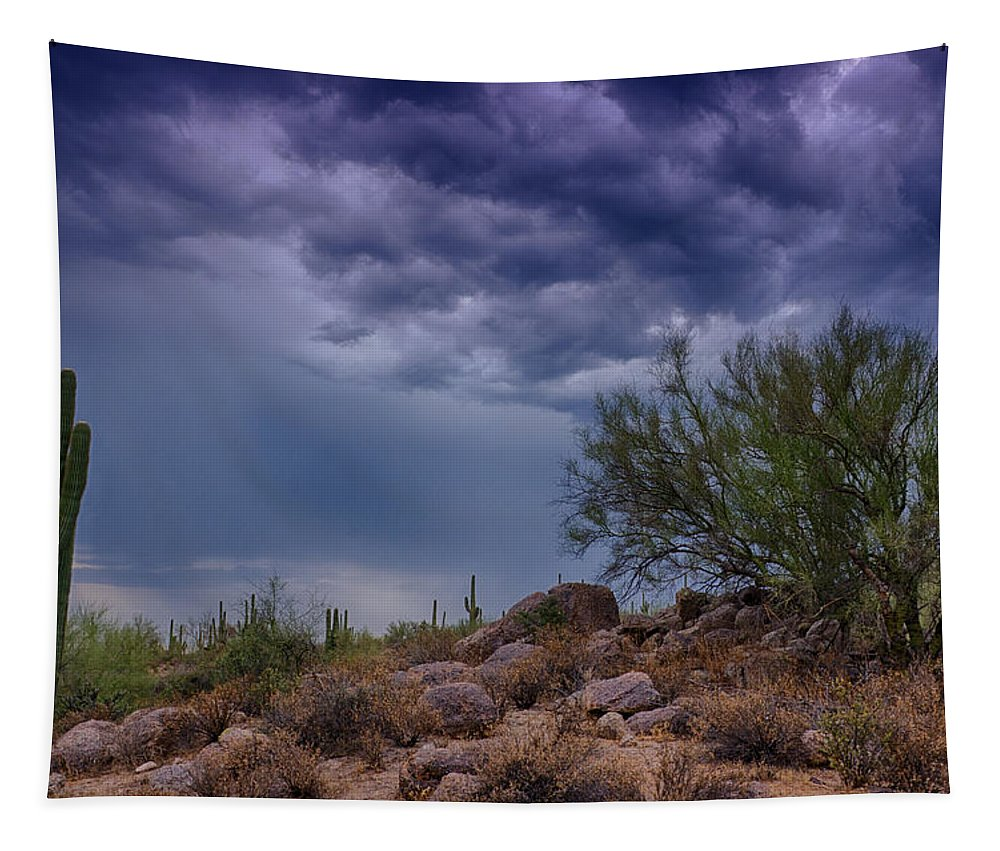 Arizona Tapestry featuring the photograph Dark Desert Skies by Saija Lehtonen