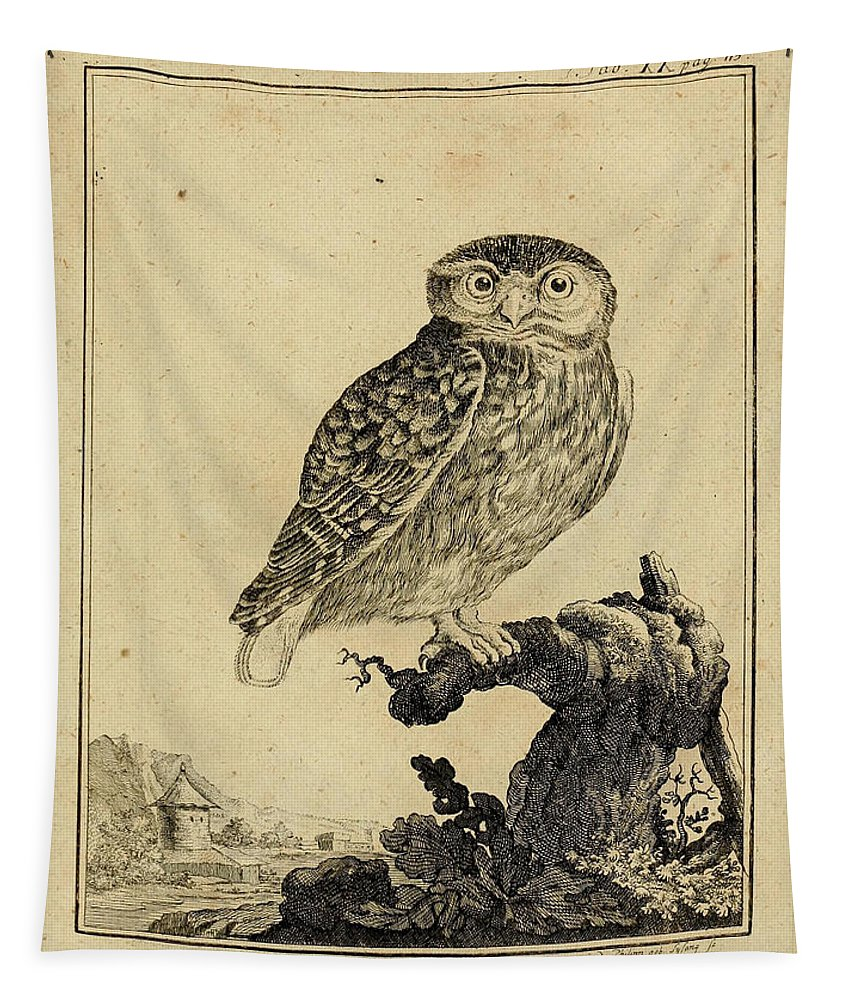 Owl Tapestry featuring the drawing Das Kautzgen by Philip Ralley