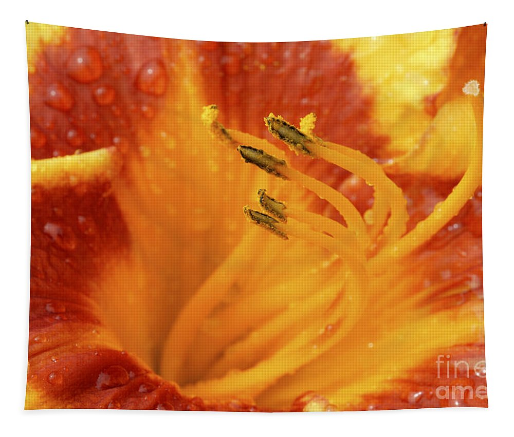 Day Lily Tapestry featuring the photograph Day Lily In The Rain - 688 by Paul W Faust - Impressions of Light