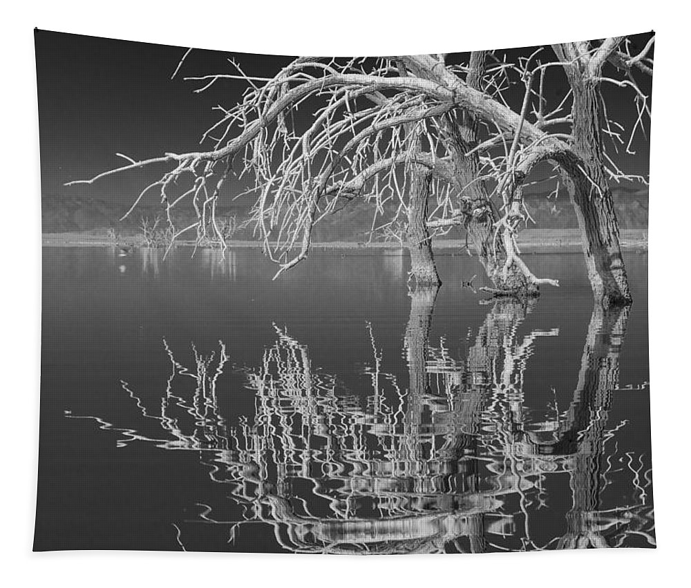 Reflection Tapestry featuring the photograph Dead Arch Black And White by Scott Campbell