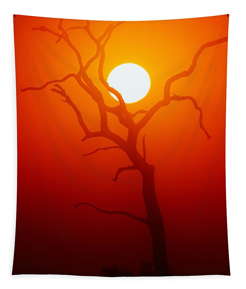 Tree Tapestry featuring the photograph Dead Tree Silhouette And Glowing Sun by Johan Swanepoel