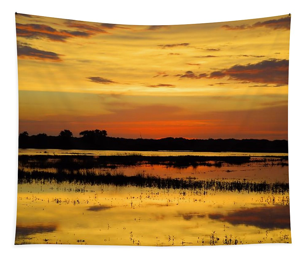 Marsh Tapestry featuring the photograph Deep Vision by Bonfire Photography