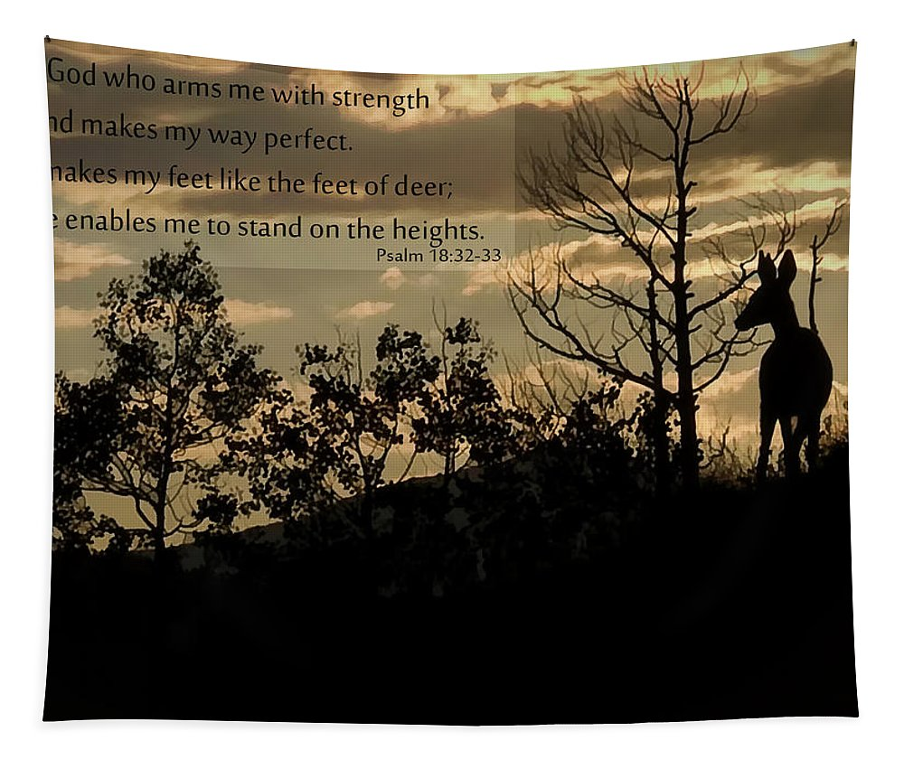 Deer Tapestry featuring the photograph Deer Silhouette by Priscilla Burgers