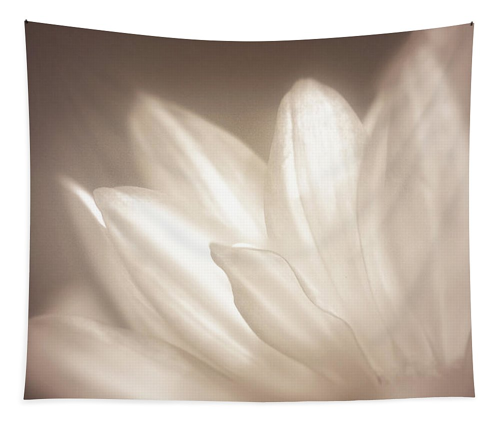 Bloom Tapestry featuring the photograph Delicate by Scott Norris