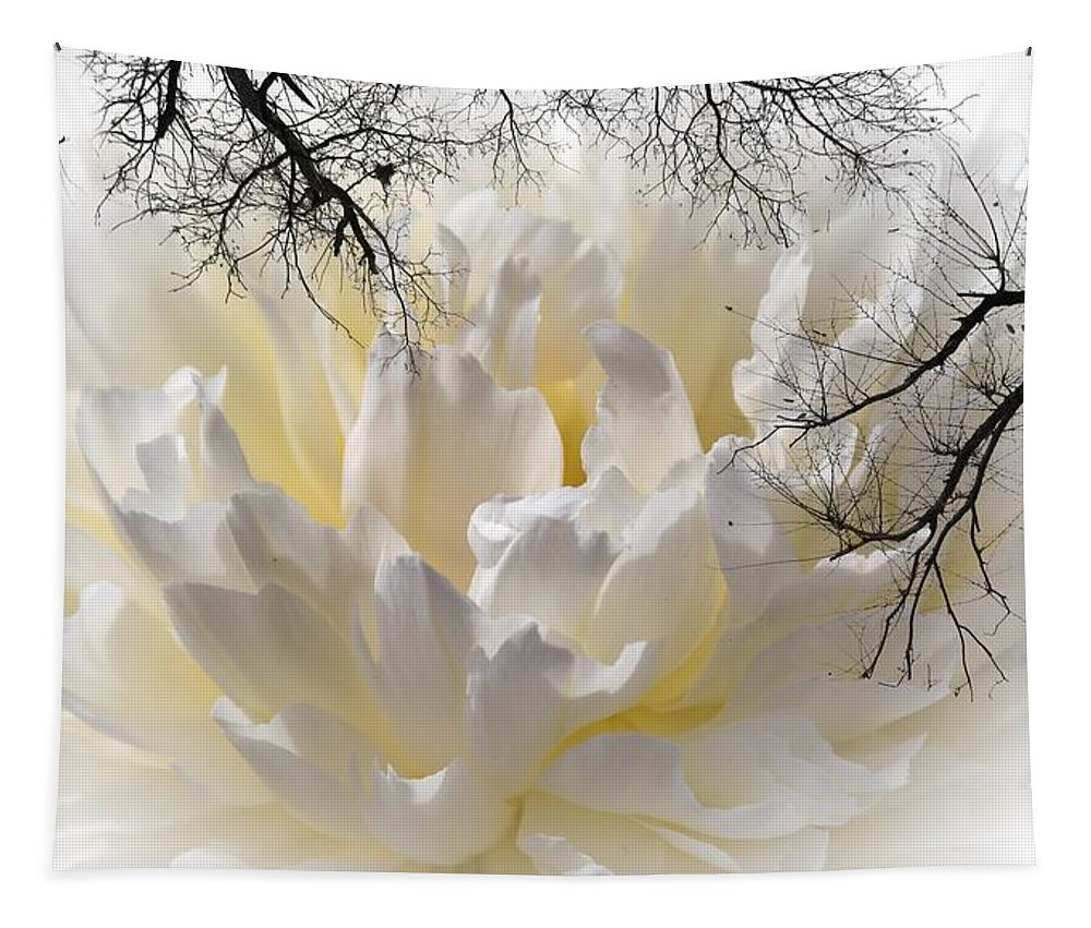 Peony Tapestry featuring the photograph Delicate by Sherman Perry