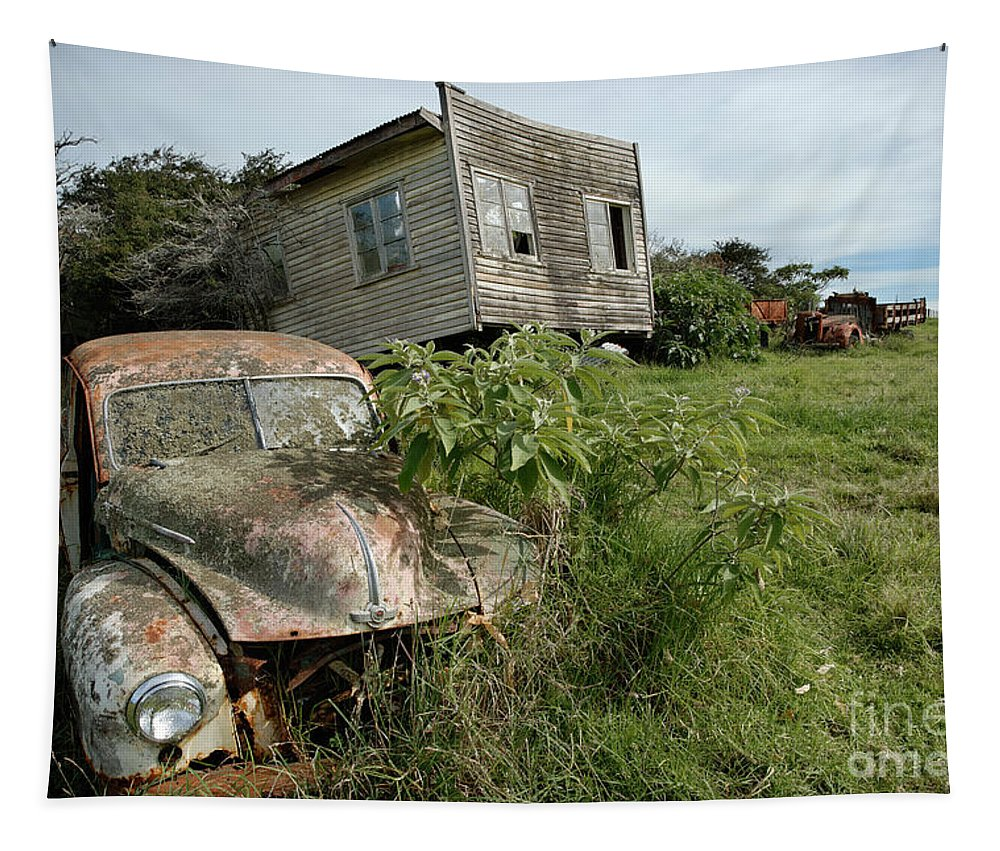Classic Tapestry featuring the photograph Derelict Morris And Old Truck On An Abandoned Farm by Frank Kletschkus