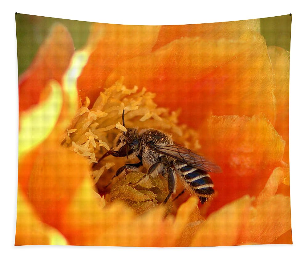 Diana Graves Photography Tapestry featuring the photograph Desert Bee by K D Graves