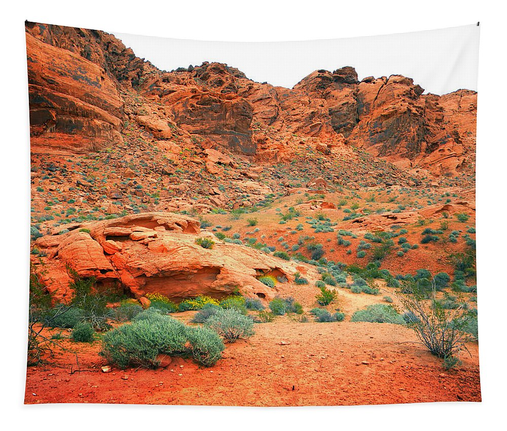 Valley Of Fire Tapestry featuring the photograph Desert Hiking Among The Sandstones by Frank Wilson