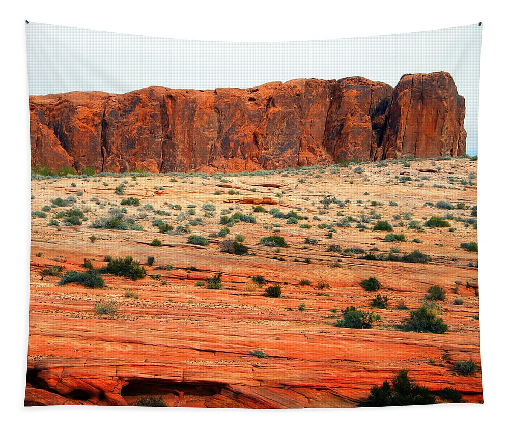 Desert Monolith Tapestry featuring the photograph Desert Monolith by Frank Wilson