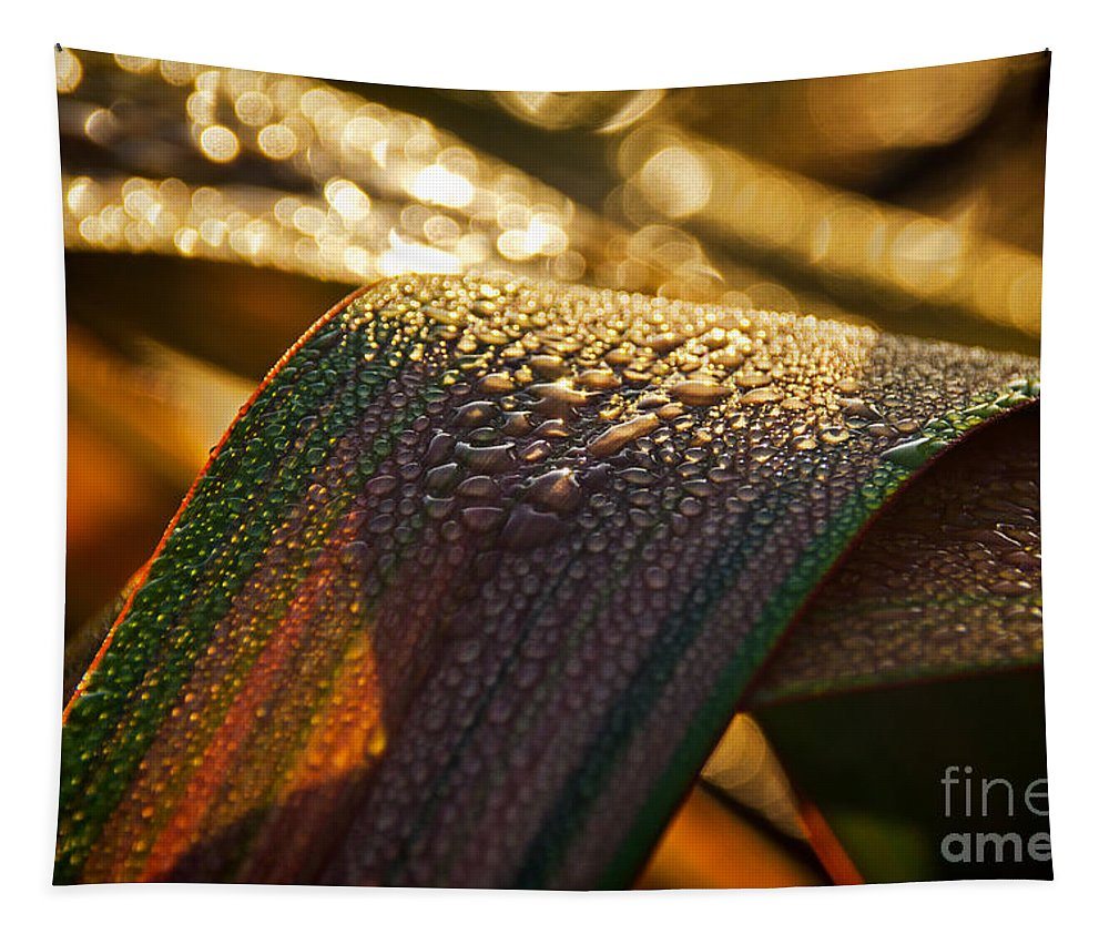 Leaves Tapestry featuring the photograph Dewy Leaves by Susie Peek