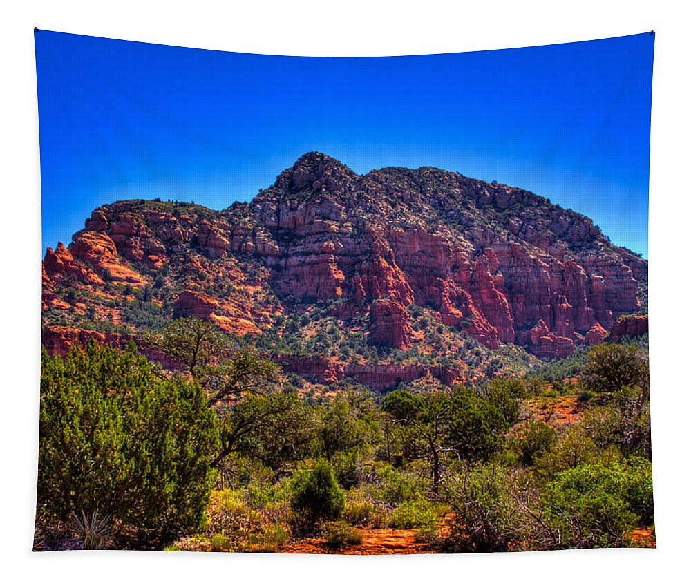 Sedona Tapestry featuring the photograph Diamondback Gulch Near Sedona Arizona Viii by David Patterson