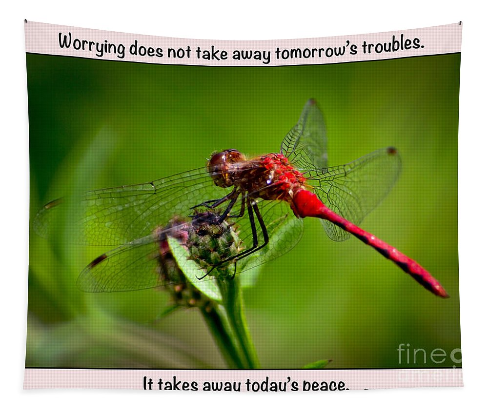 Dragonfly Tapestry featuring the photograph Do Not Worry by Kerri Farley