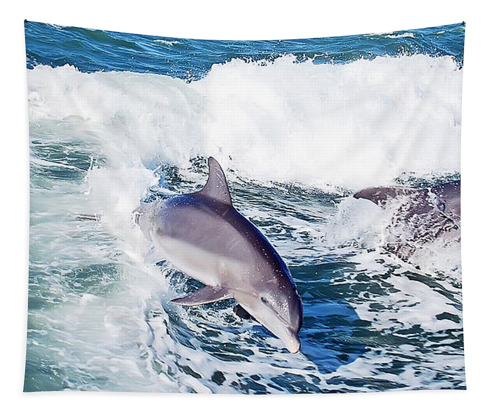 Dolphin Tapestry featuring the photograph Dolphins Jumping by Aimee L Maher ALM GALLERY