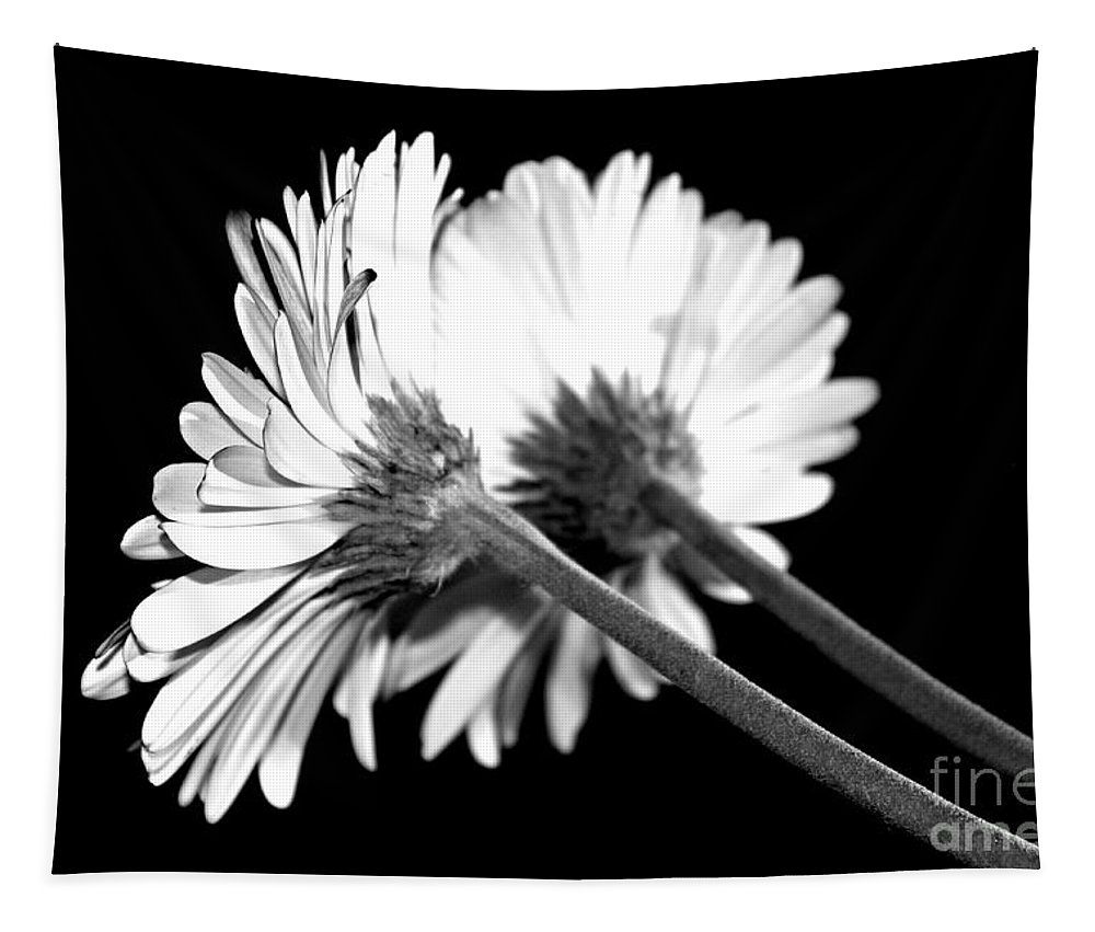 Gerbera Tapestry featuring the photograph Double Delight by Clare Bevan