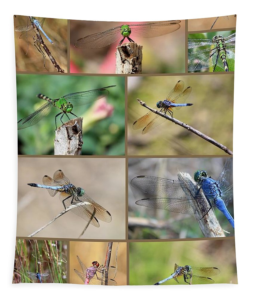 Dragonfly Tapestry featuring the photograph Dragonfly Collage 3 by Carol Groenen